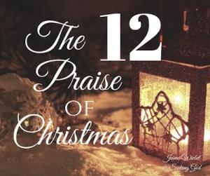 The 12 Praise of Christmas