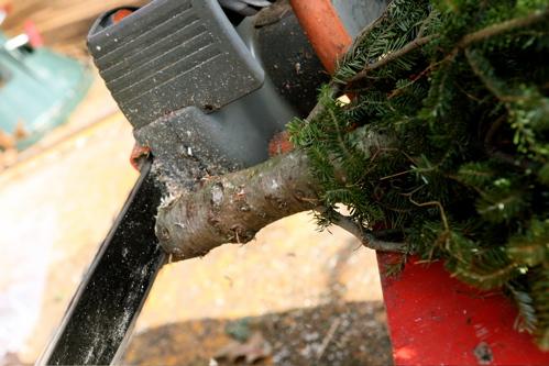 xmas-tree-08.jpg