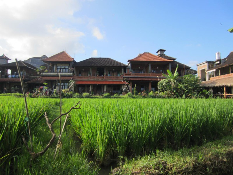 Danasari guesthouse Ubud Bali www.jaimyskitchen.nl
