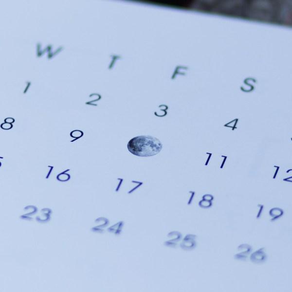 Moon Calendar - Desk Calendar 2017 by Jai Pandya