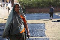 Bagru Indigo Blue printed sheets dried by the workers