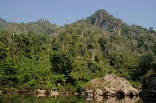 Entre Houessai et Luang Namtha (14)