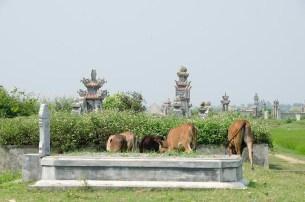 Les environs de Hué - J'ai Une Ouverture - Tour du Monde (29)