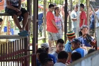 Combat de coqs - Chocolate Hills - Bohol - Philippines (22)