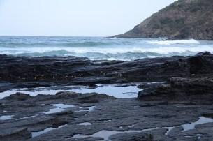 baleines - port saint johns - afrique du sud - tour du monde - jaiuneouverture