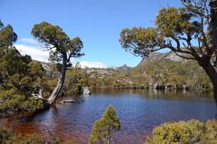 Le Cradle Mountain en Tasmanie - Jaiuneouverture - Tour du Monde (63)