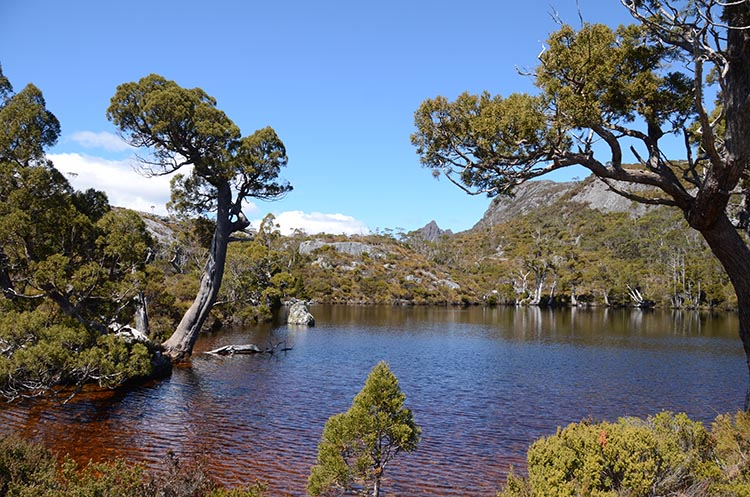 Le Cradle Mountain en Tasmanie - Jaiuneouverture - Tour du Monde (63)