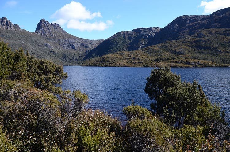 Le Cradle Mountain en Tasmanie - Jaiuneouverture - Tour du Monde (67)