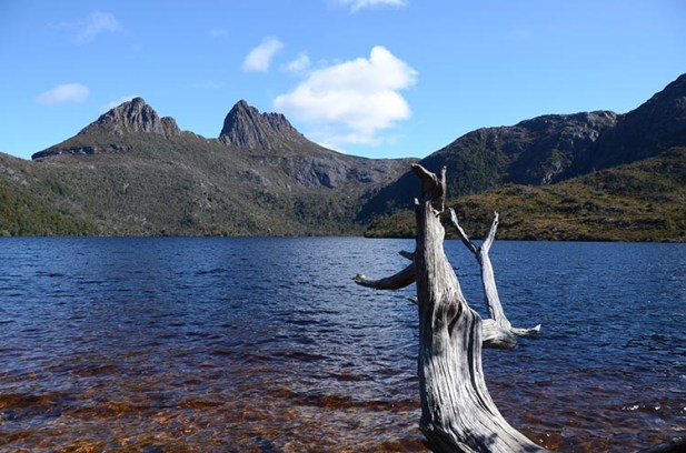 Le Cradle Mountain en Tasmanie - Jaiuneouverture - Tour du Monde (68)