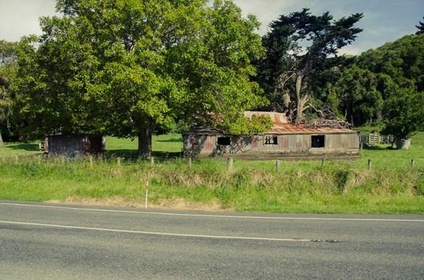 On a vu des otaries à Kaikoura - Nouvelle Zélande - Jaiuneouverture Tour du Monde (3)