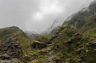 On a vu les glaciers Fox et Franz Joseph ! Nouvelle Zélande (4)