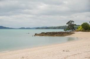 Chouchoutés par Lindy et Tim à Tinopai - Nouvelle Zélande (2)