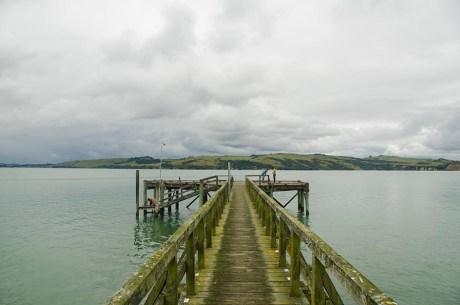 Chouchoutés par Lindy et Tim à Tinopai - Nouvelle Zélande (5)