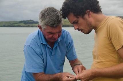 Chouchoutés par Lindy et Tim à Tinopai - Nouvelle Zélande (8)