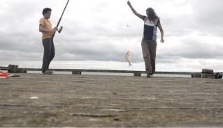 Chouchoutés par Tim & Lindy à Tinopai - Nouvelle Zélande