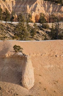 Le Bryce Canyon - Utah - USA (5) copy