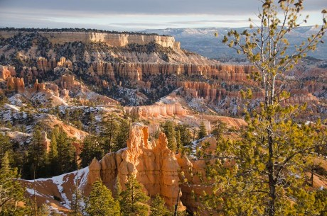 Le Bryce Canyon - Utah - USA (6)