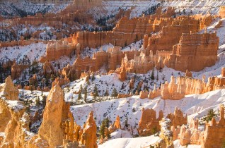 Le Bryce Canyon - Utah - USA (7)