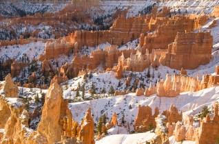 Le Bryce Canyon - Utah - USA (7)