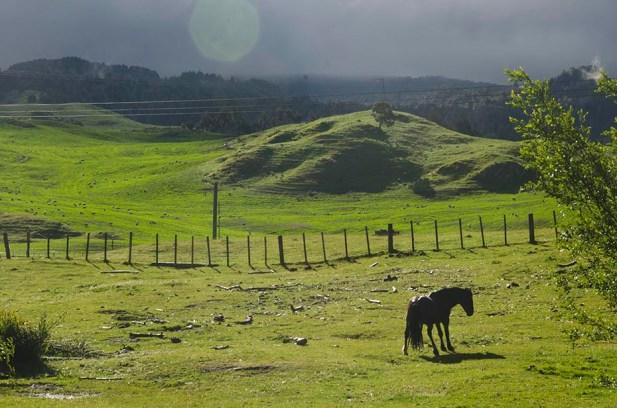 Région secrète en Nouvelle-Zélande (16)