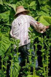 Esteli au Nicaragua (29)