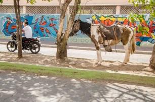 Esteli au Nicaragua (8)