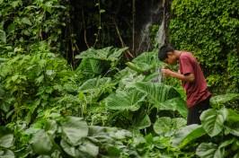 Juayua au El Salvador (4)