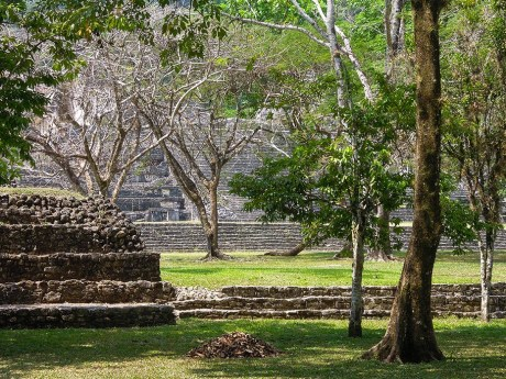 Palenque au Mexique (17)