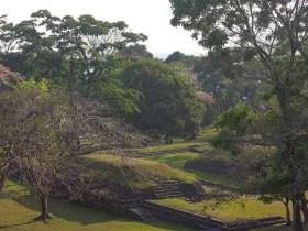 Palenque au Mexique (7)