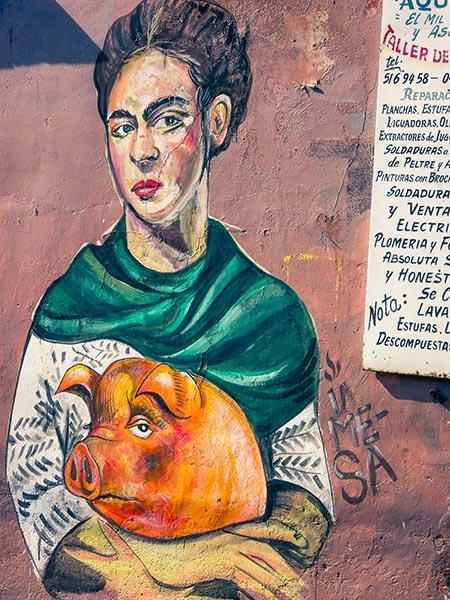 Street Art - Oaxaca - Mexique (4) copy