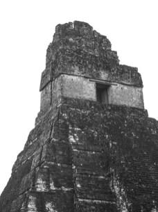 Tikal au Guatemala (6) copy