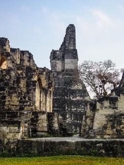 Tikal au Guatemala (8) copy