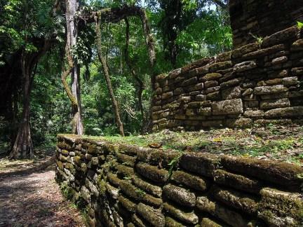 Yaxchilan au Mexique (7)