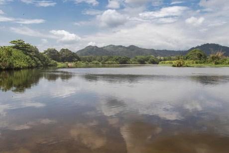 Palomino - Colombie (19)
