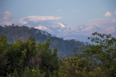 Palomino - Colombie (3)