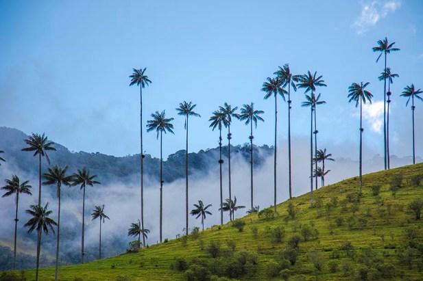 Salento - Colombie (3)