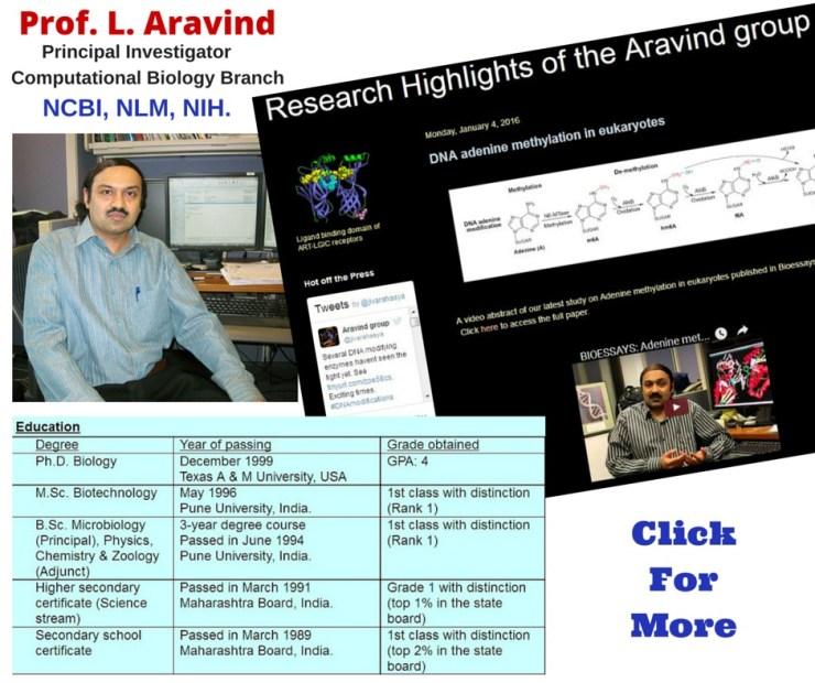 L. Aravind