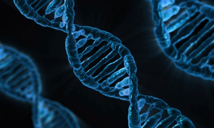 DNA-featured-1