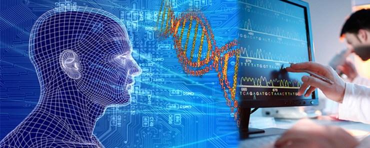 bioinformaticsSlider