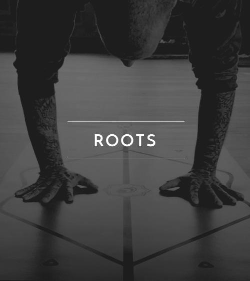jai_classtypes_roots