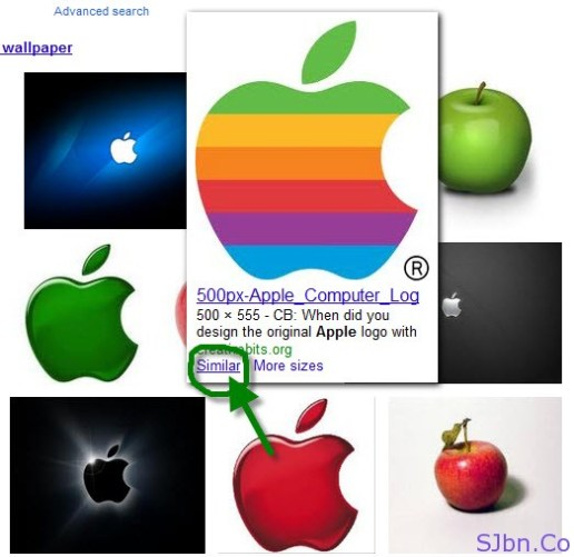 Google Image Search - Similar