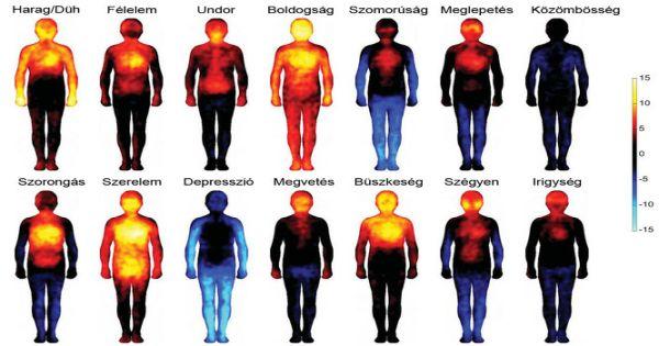 Lelki problémák – érzelmek – testi fájdalmak összefüggései