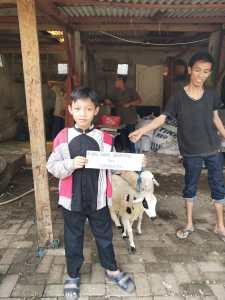 di kandang kambing anak kecil