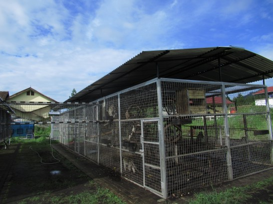 Our specially made, rehabilitation center in Bandung, Indonesia.