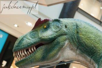 dinozaur-zeby