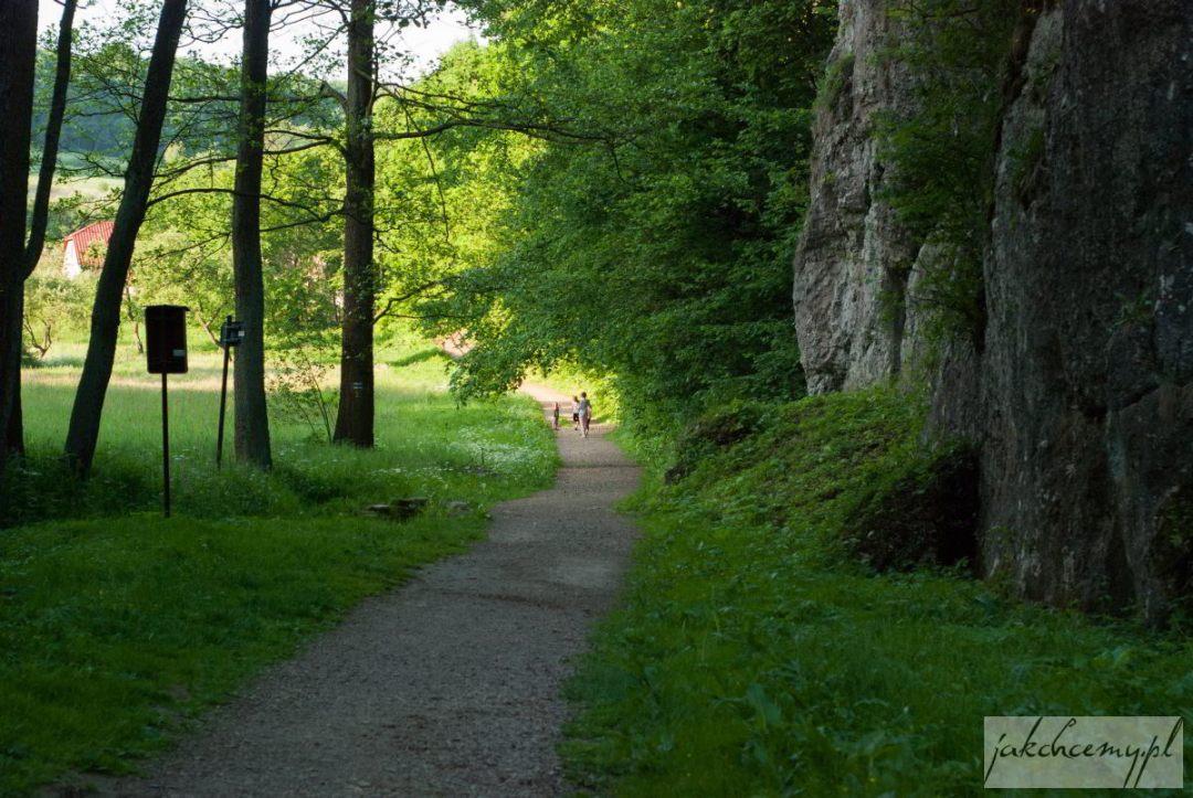 Dolina Mnikowska koniec spaceru