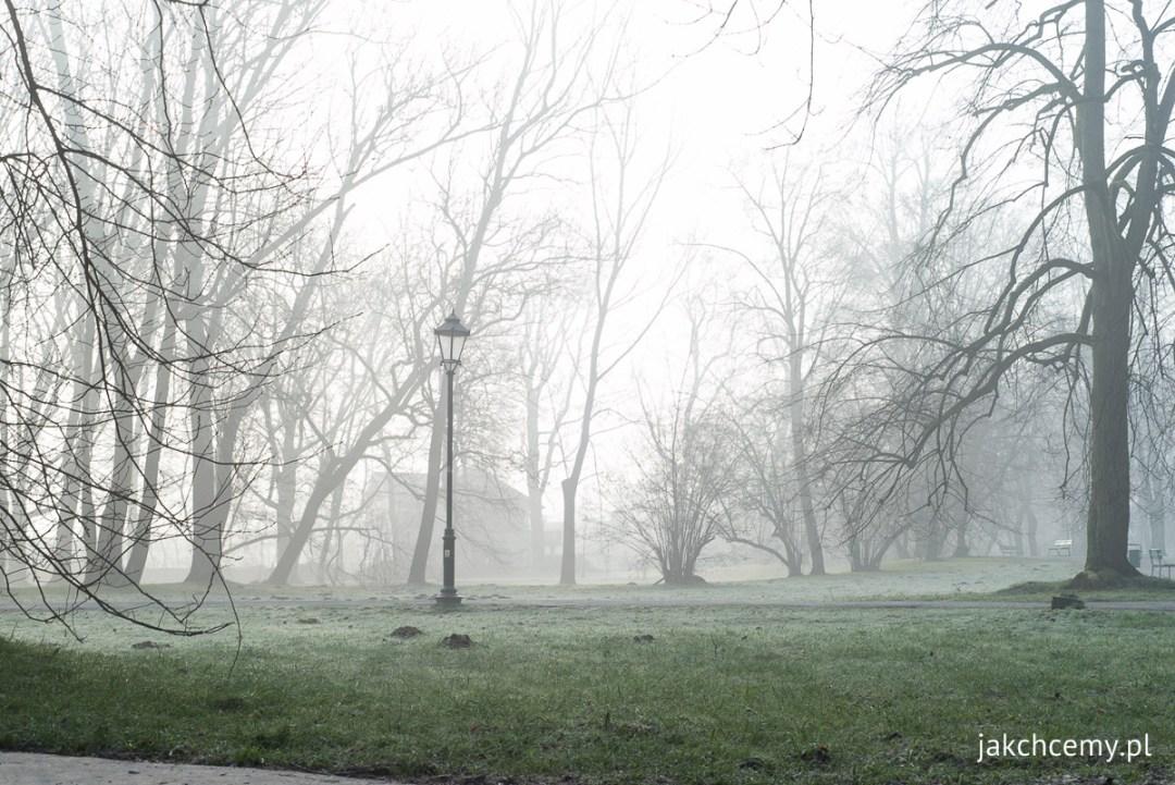 mglisto park decjusza szron prawie wiosna 3