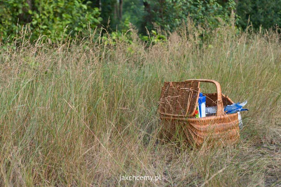 piknik Rapy Dylańskie las