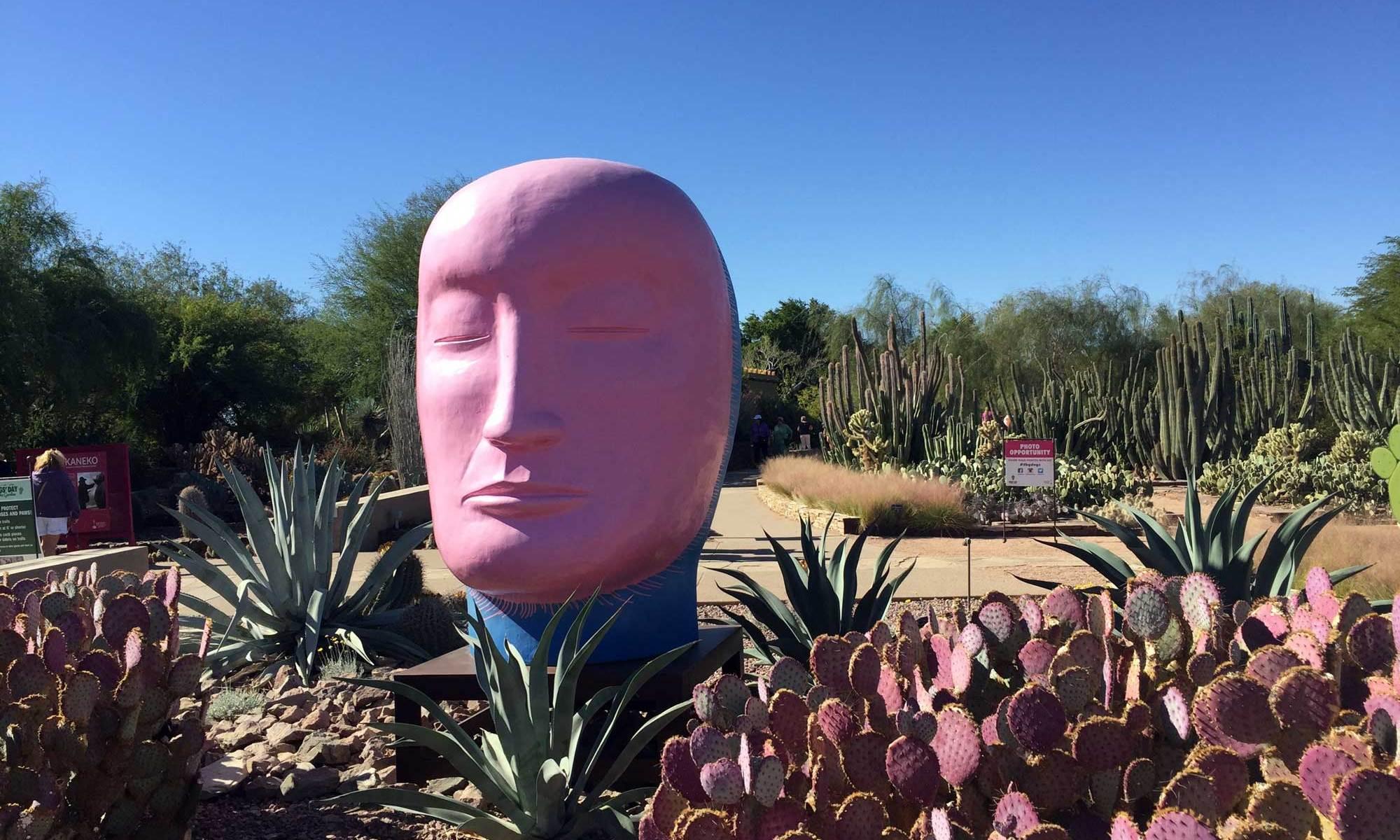 At the Desert Botanical Garden, November 2017