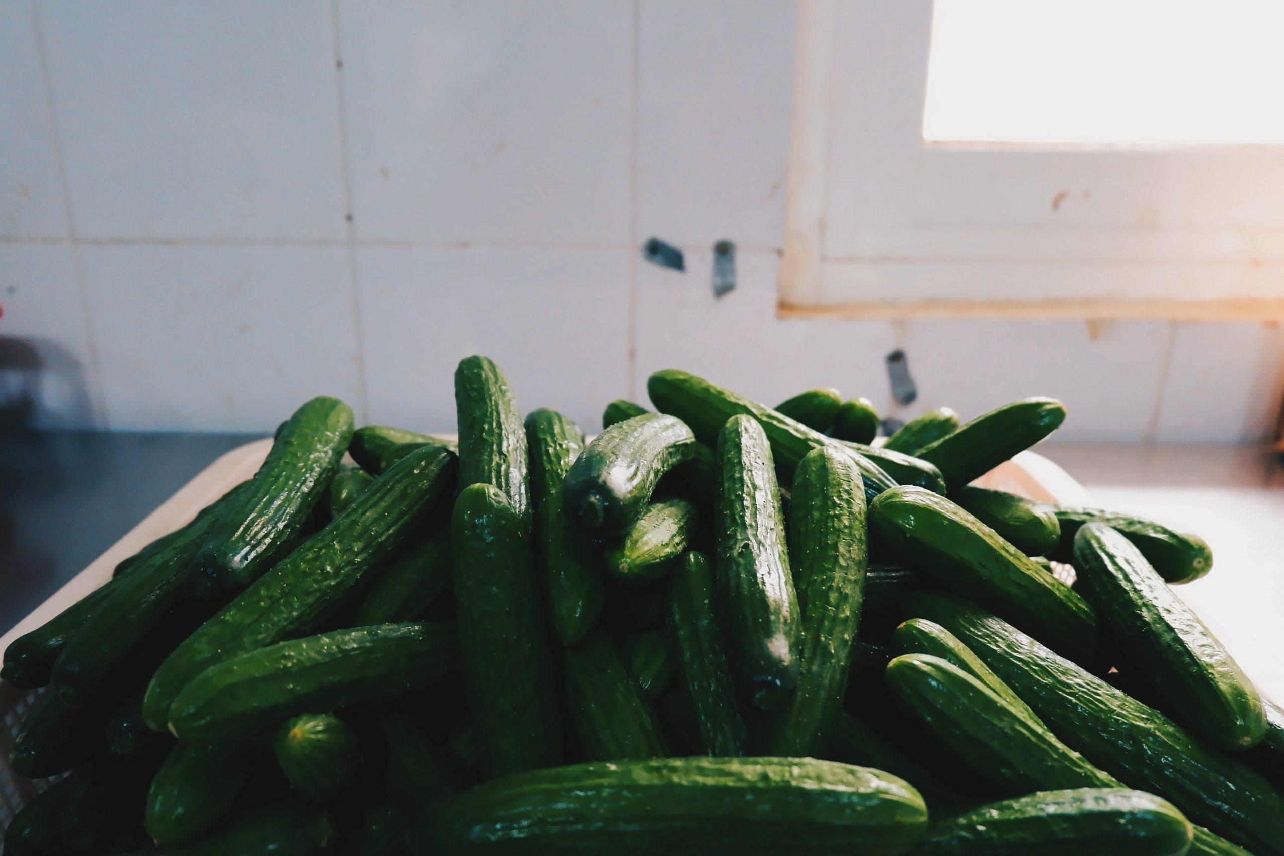 Cucumber photo by Deviyahya on Unsplash
